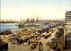 1856-1992: Construction & Vie des Docks